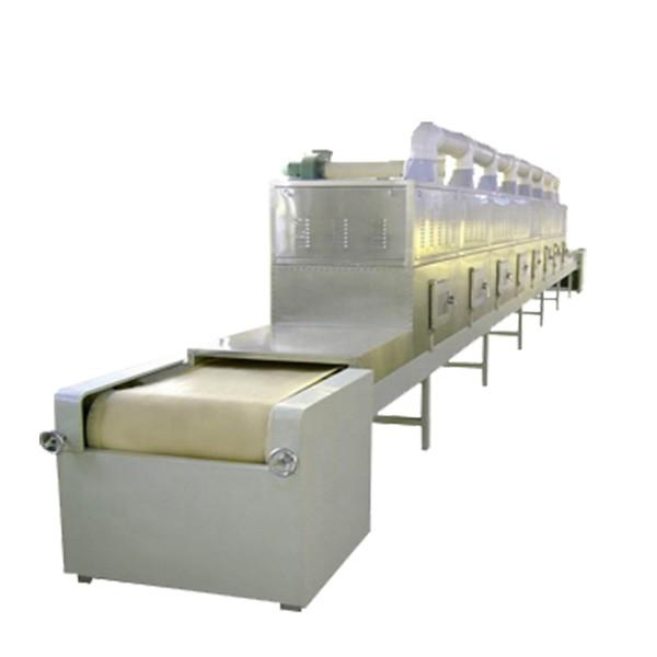 Large Industrial Continuous Microwave Food Drying Machine #1 image