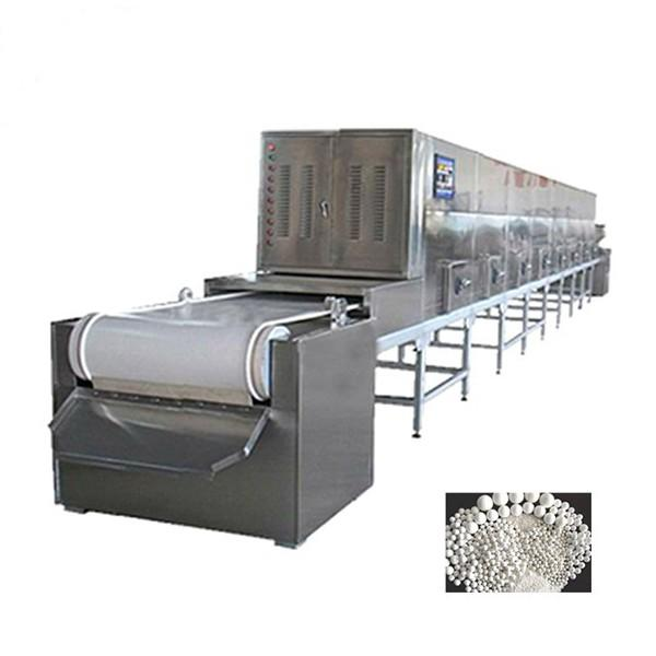 Large Industrial Continuous Microwave Food Dryer #1 image