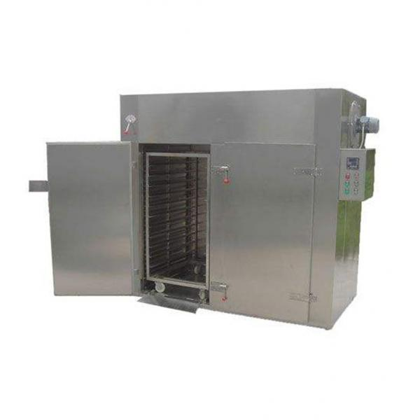 Dried Meat Processing Machine/ Beef Jerky Drying Machine #1 image